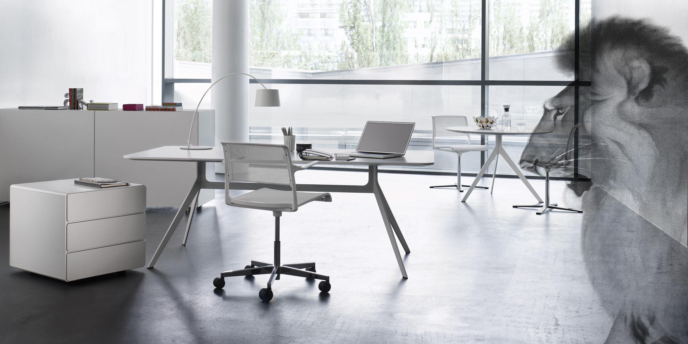 star start management stil buero aufbewahrung loewe schlicht office blaha
