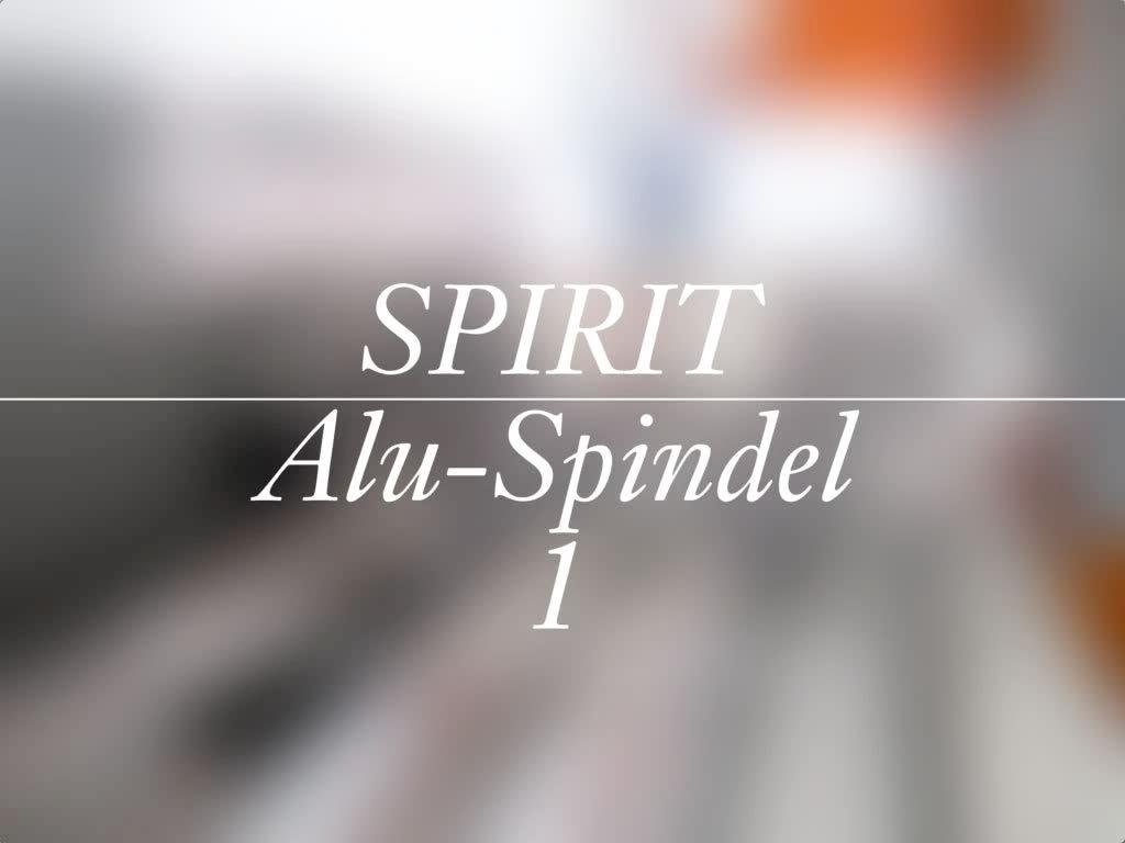 video spirit alu spindel blaha buero office 1
